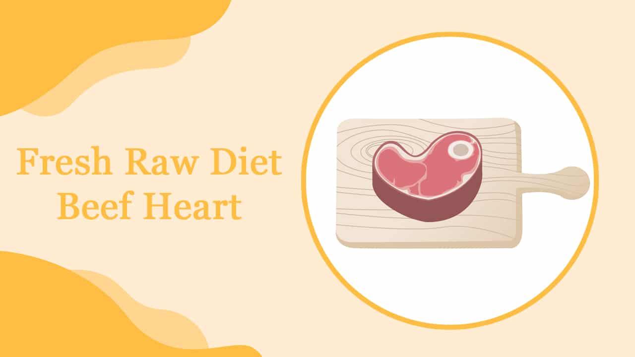 Hairless Cat Fresh Raw Diet – Beef Heart