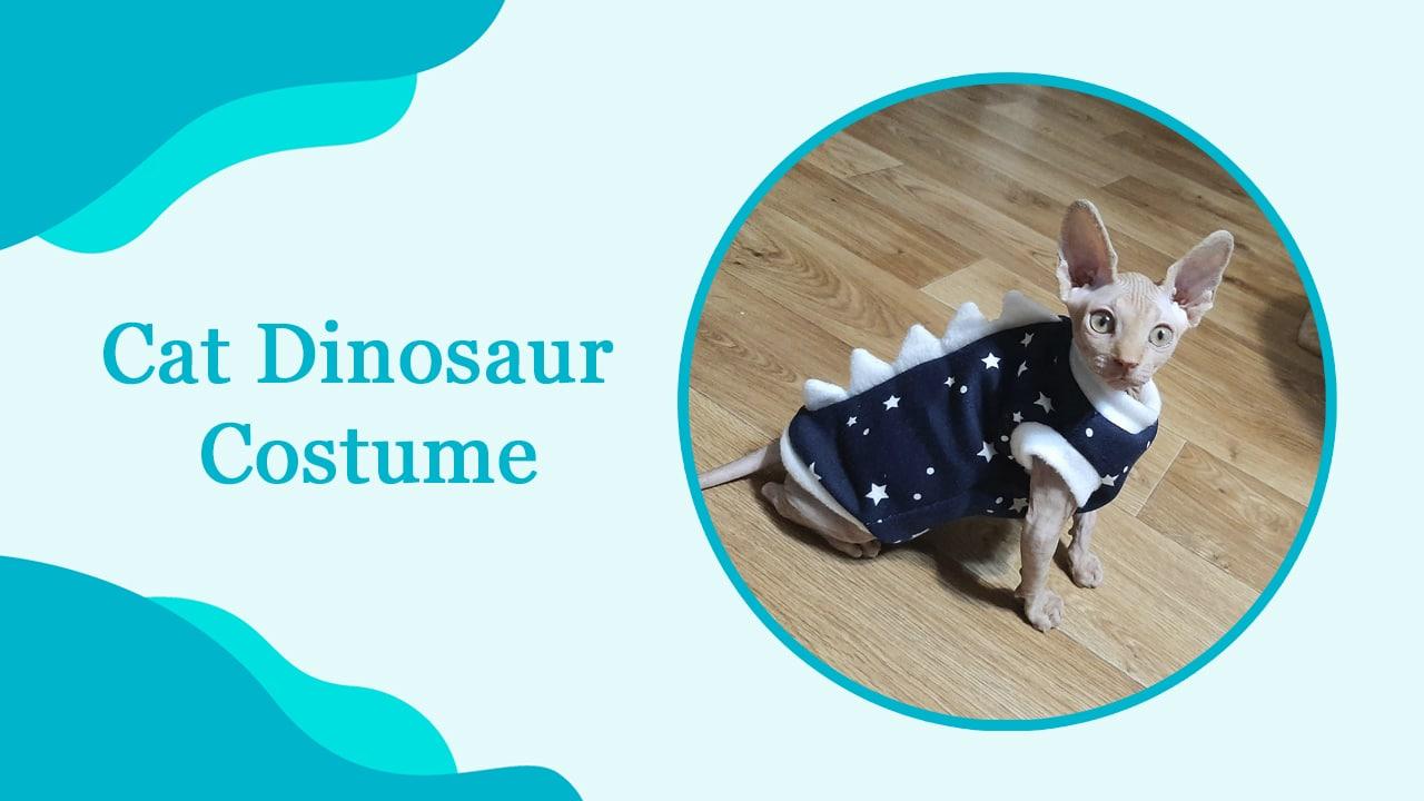 Cat Dinosaur Costume